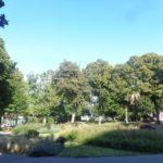 Grete Rehor Park