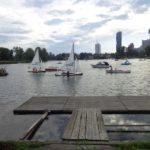 Spätsommer an der Alten Donau