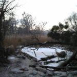 Mauthnerwasser im Winter