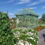 Sommerblumenschau in den Blumengärten Hirschstetten